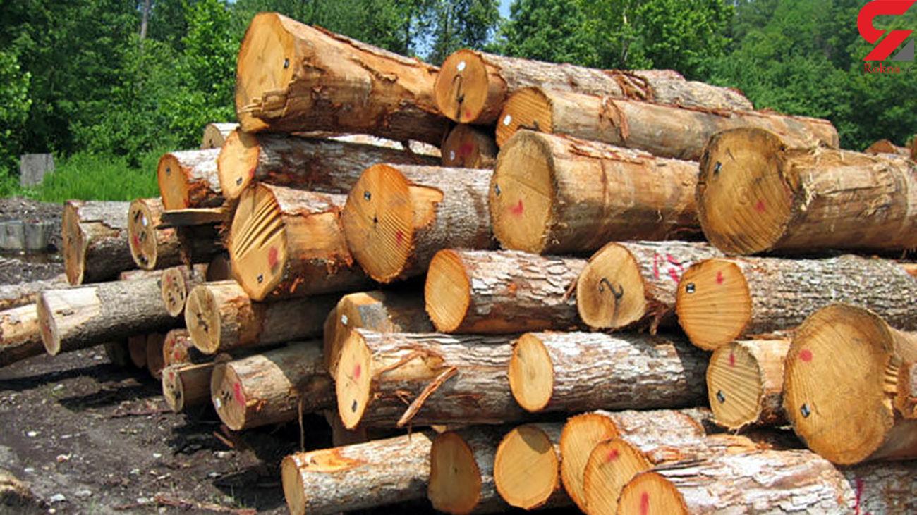 کشف چوبآلات جنگلی قاچاق در اردبیل