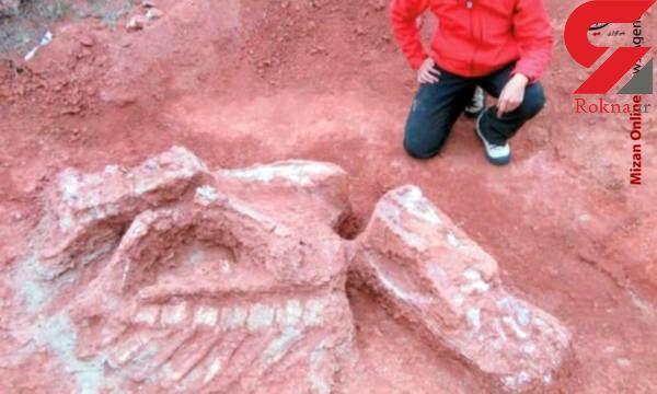 کشف استخوان 10 تنی دایناسور 200 میلیون ساله+ عکس