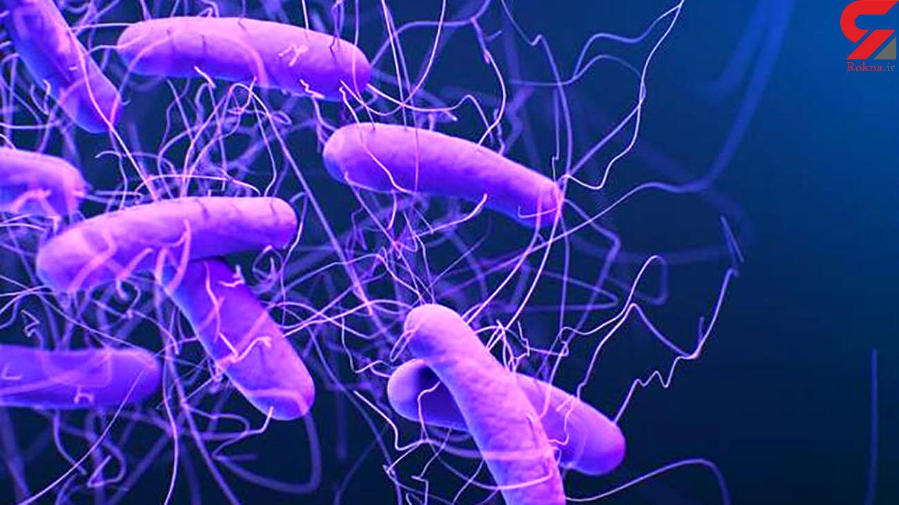 شناسایی باکتریهای مقاوم در برابر دارو