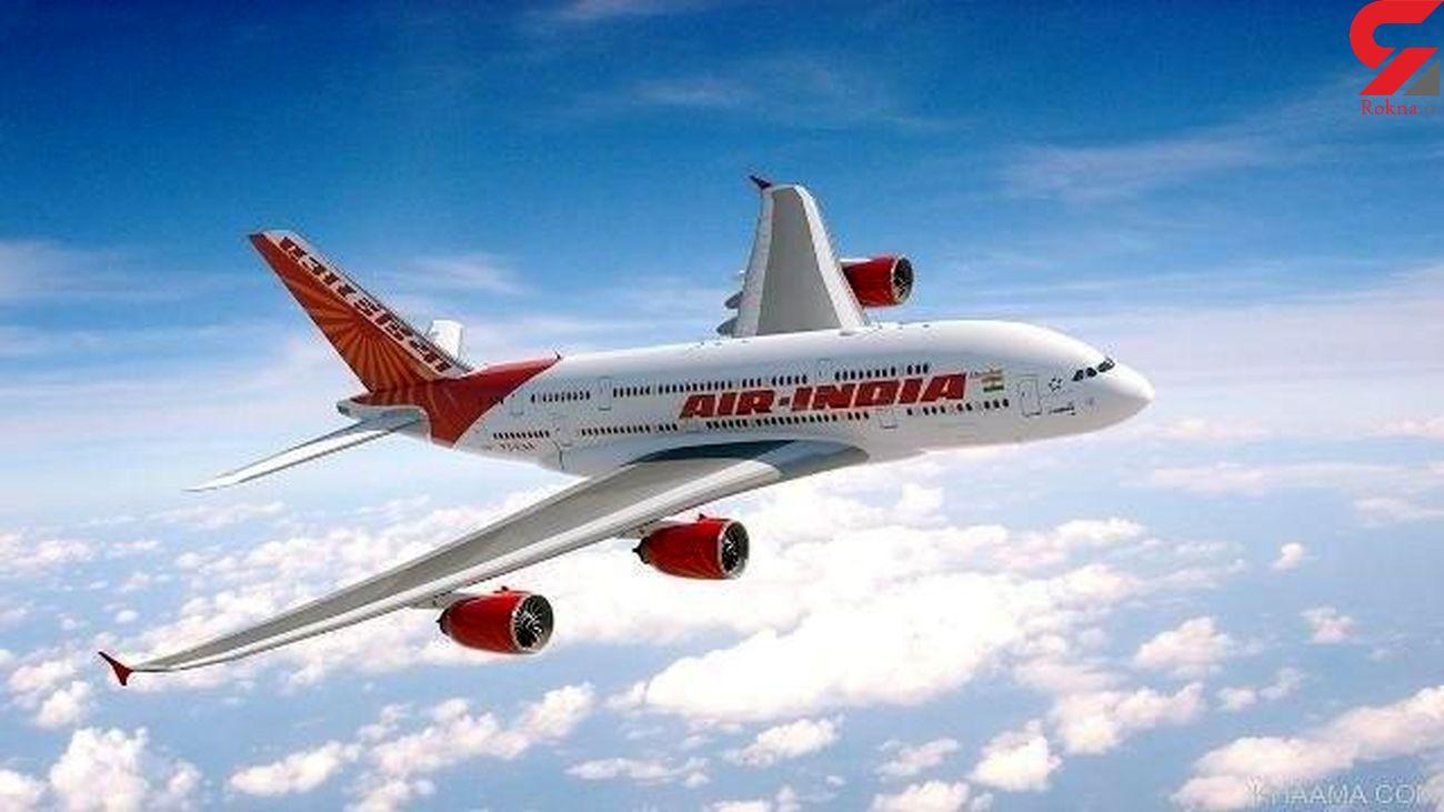 سقوط هواپیمای مسافربری در  هند با 191 مسافر + فیلم