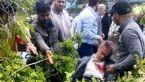 سقوط تیربرق روی دسته عزاداران حسینی بهشهر قربانی گرفت+تصاویر