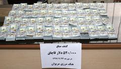 کشف ۵۲۰ هزار دلار ارز قاچاق در مرز مریوان+عکس
