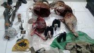 دستگیری 4 شکارچی متخلف در شاهرود / کشف 2  لاشه قوچ + عکس