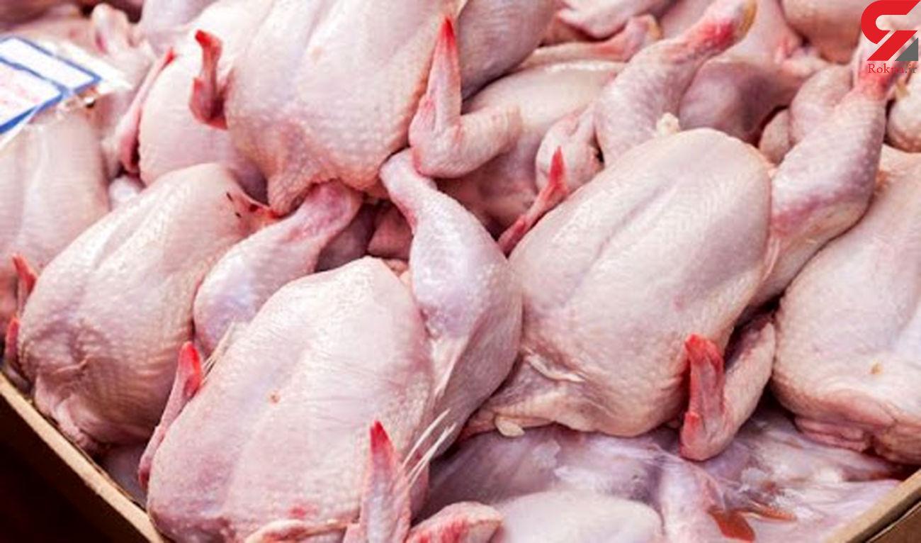 ممنوعیت خروج مرغ از لرستان
