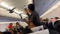دردسر در پرواز احمدآباد به خاطر 2 کبوتر + فیلم