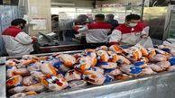 کشتار روزانه ۱۳۰ تا ۱۴۰ تن مرغ در مرغداریهای استان اردبیل