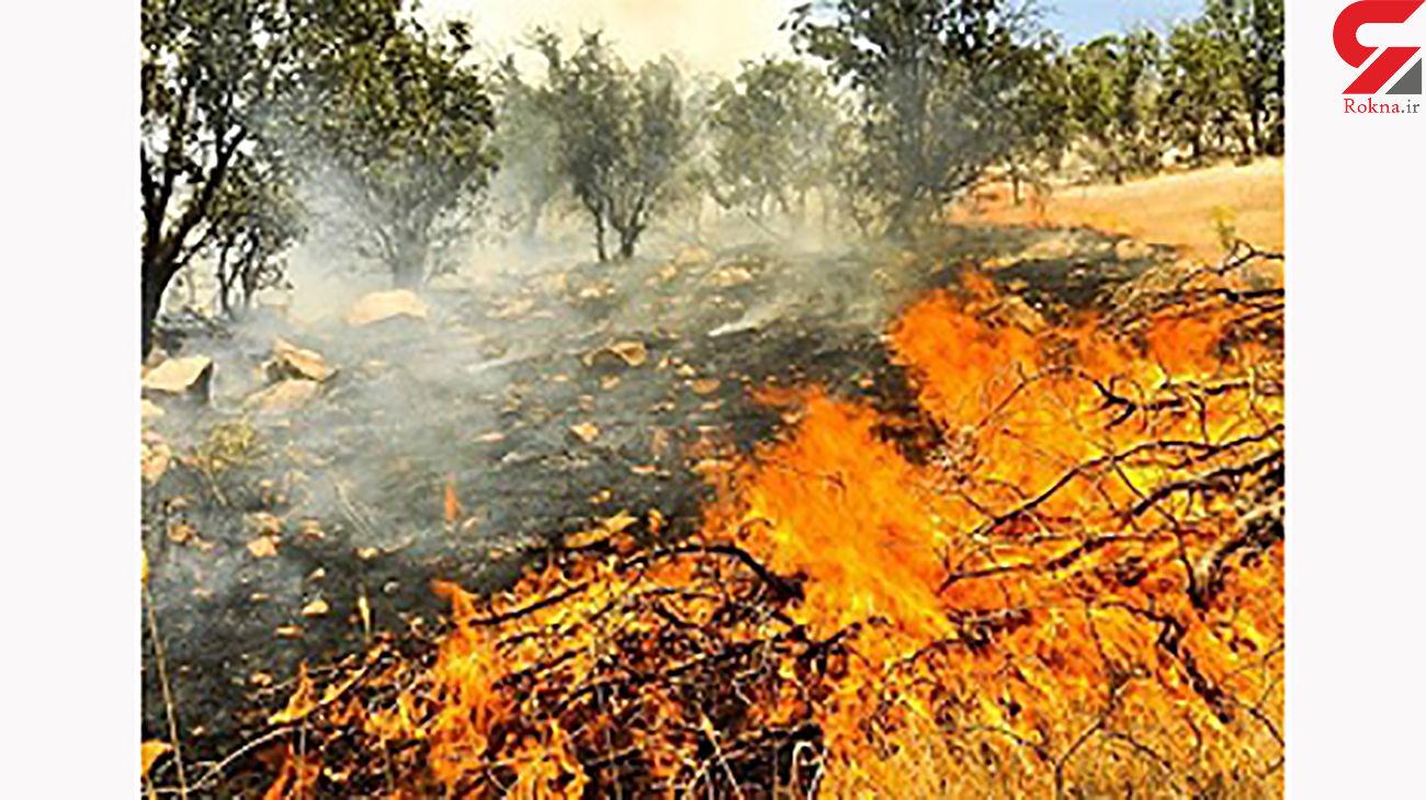 آتش سوزی در مراتع بخش سوسن ایذه