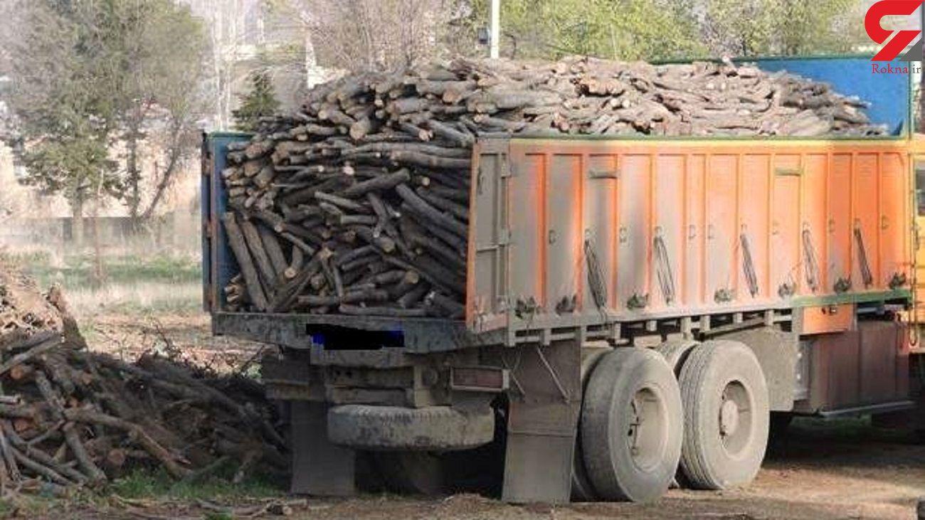 افزایش 30 درصدی کشفیات قاچاق چوب