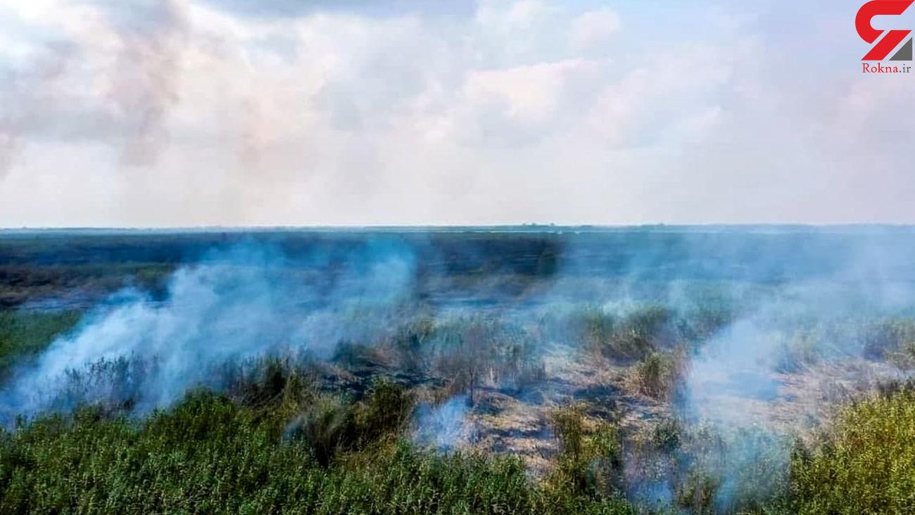 آتش تالاب انزلی با باران خاموش شد