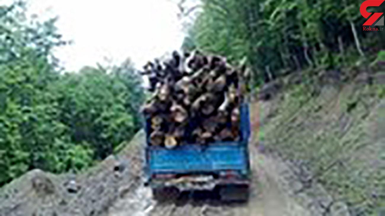 کشف ۳ تن چوب قاچاق در زنجان