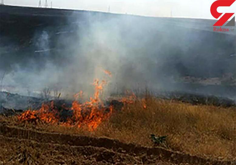 علت آتشسوزی جنگل گلستان چه بود؟