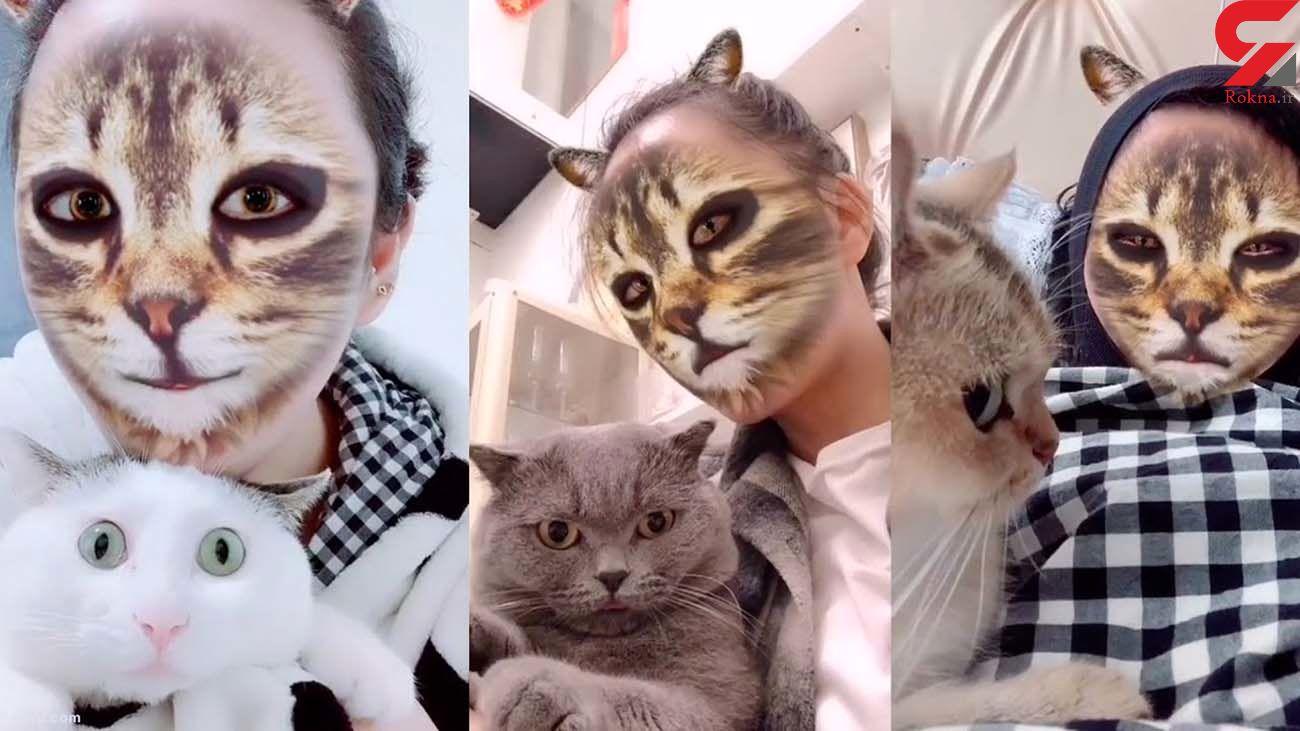 تعجب این گربه ها دیدن دارد + فیلم