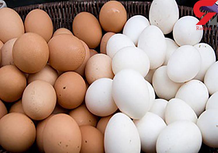 قیمت جدید مرغ و تخممرغ در بازار