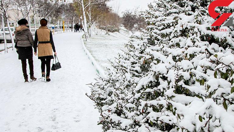 برف اردبیل را سپید پوش کرد+عکس