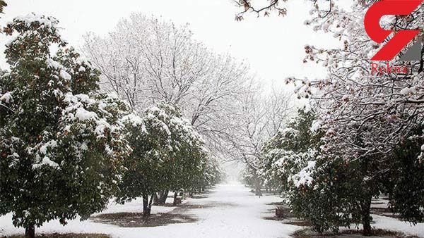 هوای 5 استان برفی و بارانی میشود