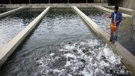 7 کارگاه غیر مجاز پرورش ماهی در اردل تخریب شد