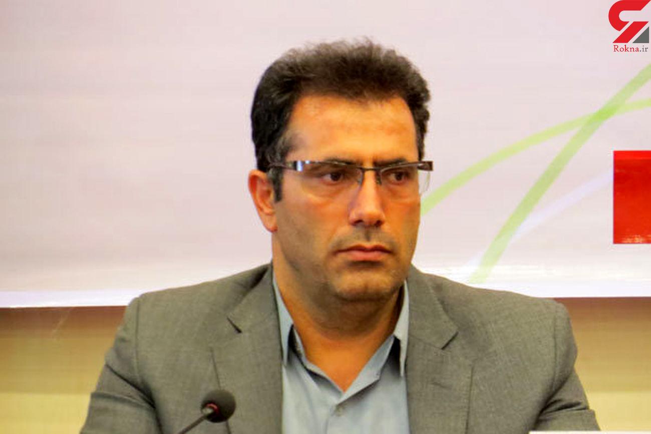 شهرداری قزوین نسبت به قطع درختان باید برخورد یکسانی داشته باشد