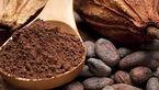 سالمندان کاکائو بخورند تا آلزایمر نگیرند