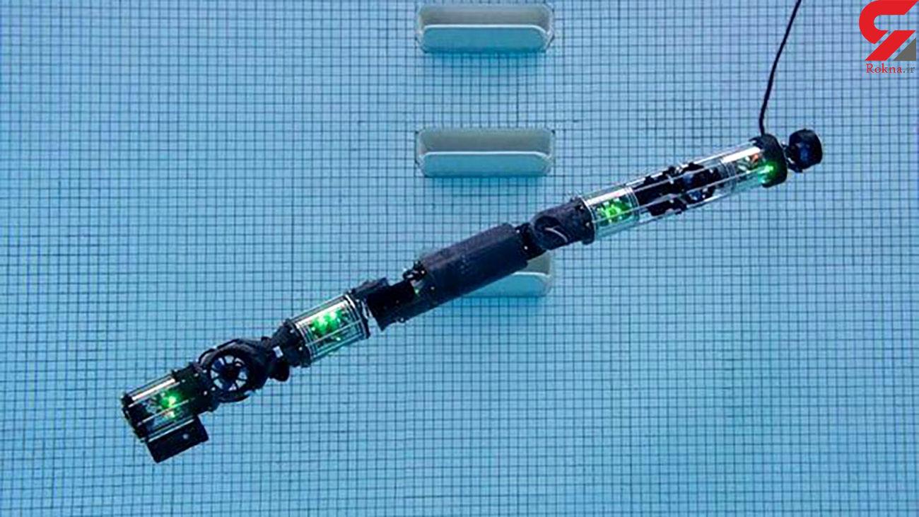 این ربات زیرآبی می رود !  + عکس