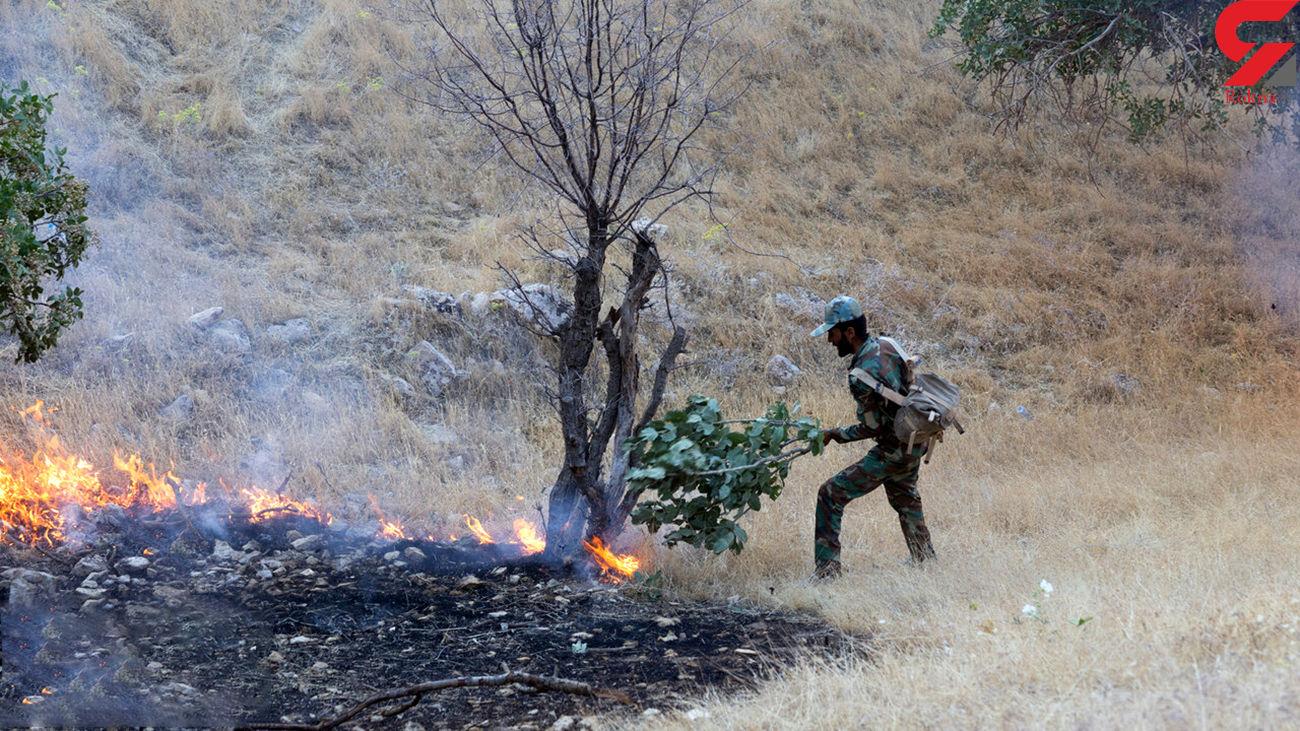 آتش سوزی در منطقه حفاظت شده کرائی