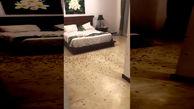 حمله سوسک ها به یک اتاق هتل / زن و شوهر شوکه شدند+ فیلم