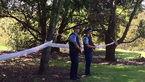 کشف جسد نوزاد تازه متولد شده در پارک / پلیس: هنوز هیچ سرنخی در دست نیست+عکس