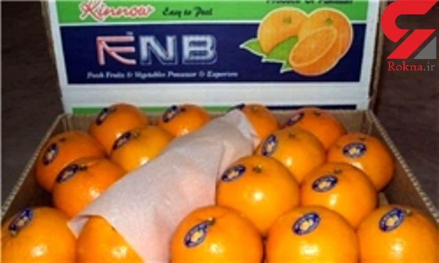 ایران ممنوعیت واردات نارنگی از پاکستان را لغو کرد