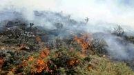 5 هکتار از مراتع سلطانیه در آتش سوخت