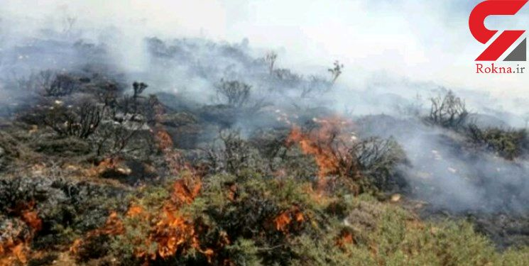 مهار آتش سوزی در اراضی جنگلی چهلمیر