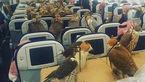 مسافرت عجیب 80 شاهین با یک هواپیمای مسافربری+ فیلم و تصاویر