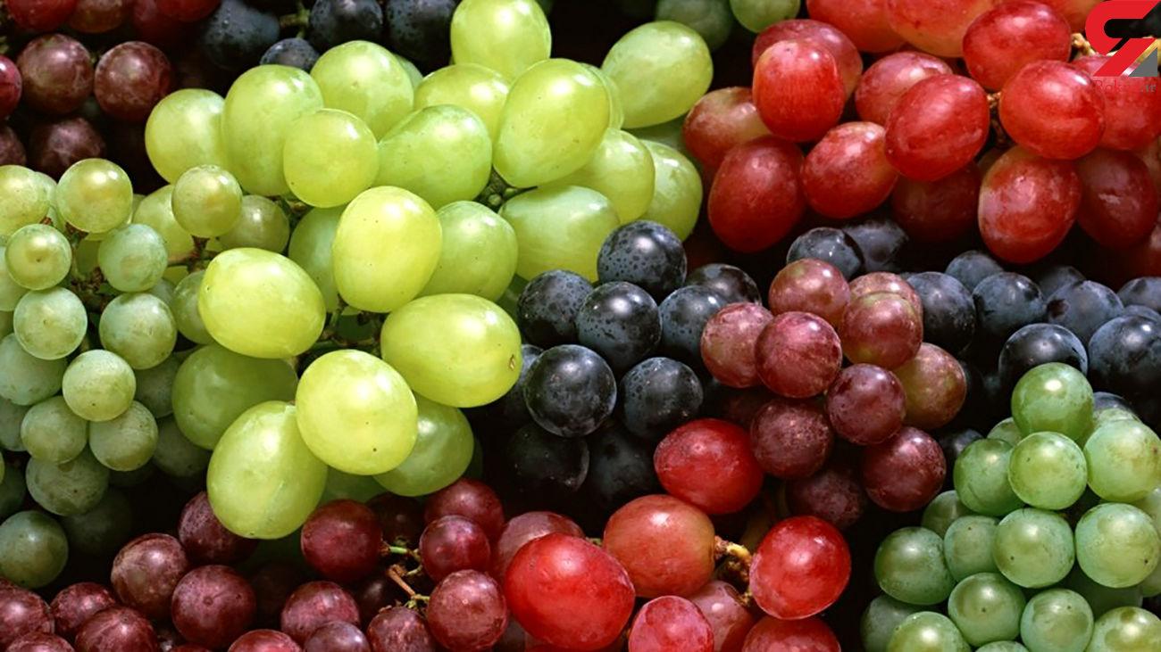 میوه ضد کلسترول خون را بشناسید