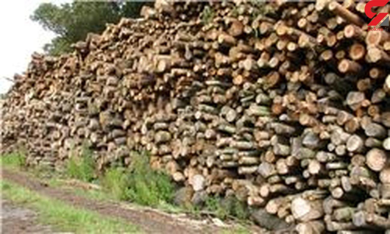 کشف ۹ تن چوب و زغال تاغ قاچاق در شاهرود