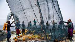 تایید رسمی ماهیگیری چینیها در آب های عمیق ایران در دریای عمان