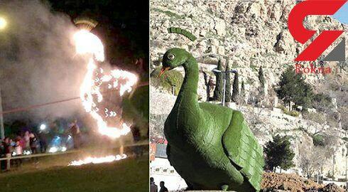 طاووس ها را در شیراز زنده زنده آنش می زنند! ؟/ علت چیست؟ + جزییات