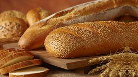 کمبود آرد در نانواییها همچنان ادامه دارد/ توزیع قطرهچکانی گندم در کارخانههای آرد