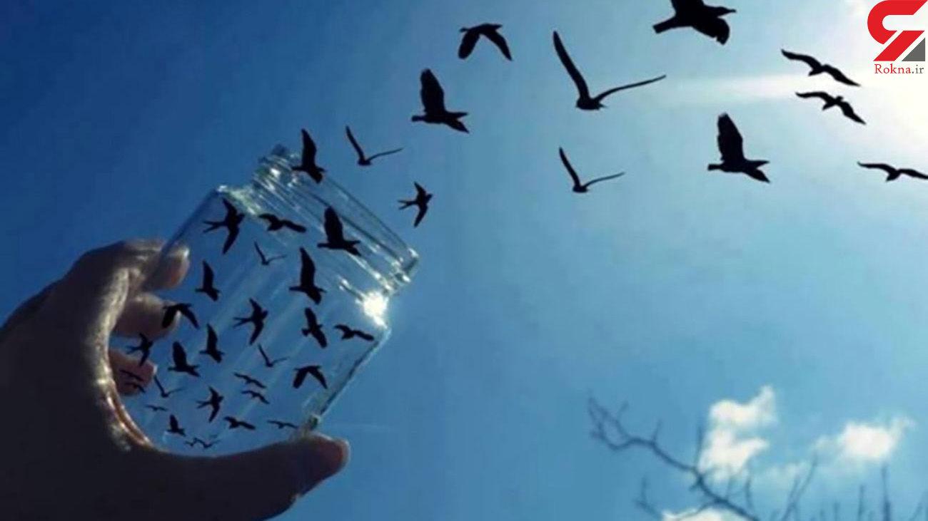 آزادی 14 زندانی جرایم غیرعمد در ماکو