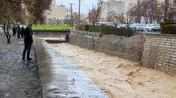 ۱۲ نفر از مرگ حتمی نجات یافتند/ آبگرفتگی ۲۱ منزل مسکونی در خراسانجنوبی