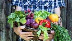 این نشانه ها کمبود ویتامین هی سبزیجات در بدن را هشدار می دهد