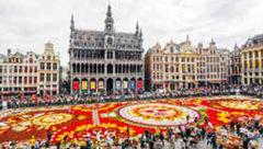فرشی از گل در بلژیک