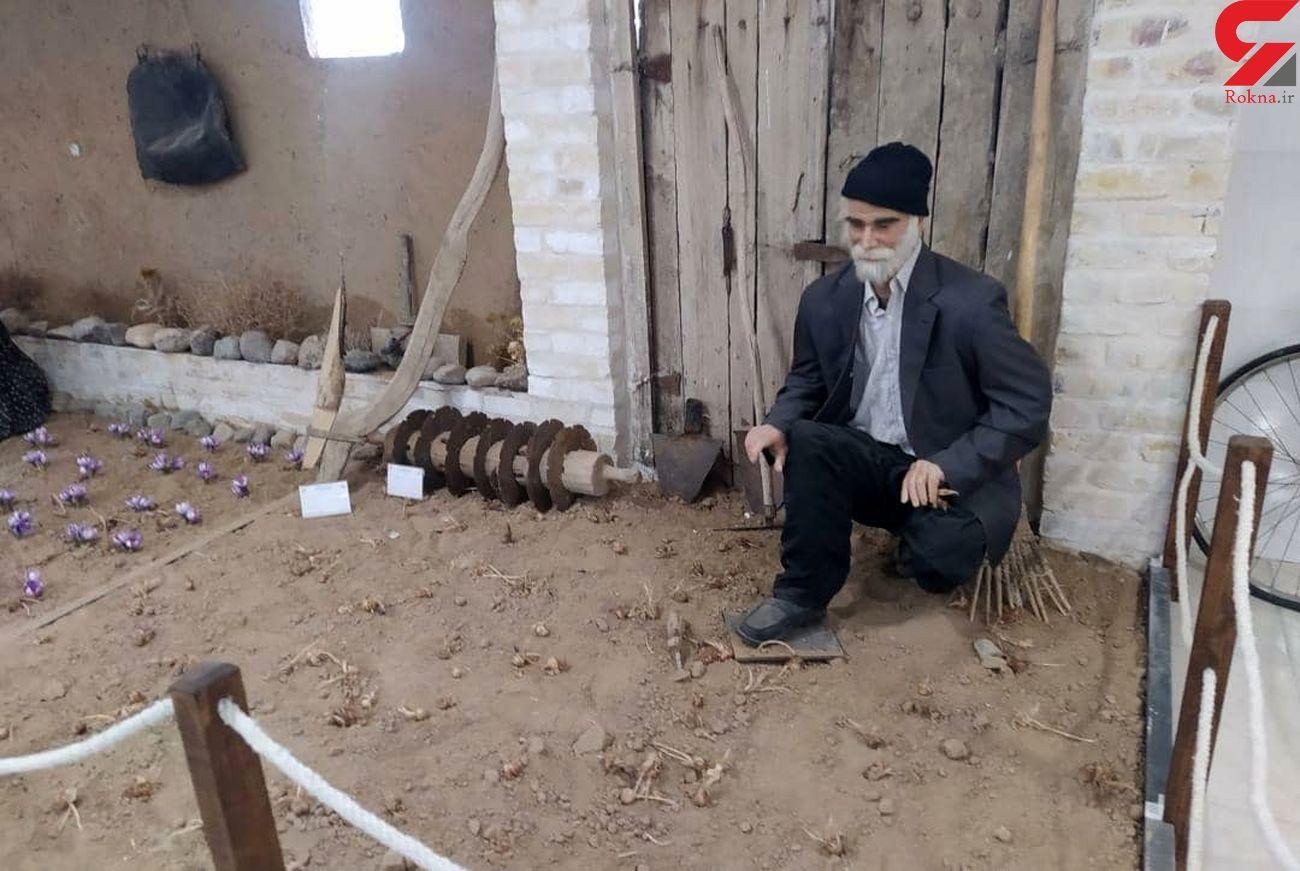 مجوز نخستین موزه زعفران کشور در تربت حیدریه صادر شد