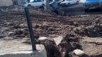 فیلم / گلایه اهالی کوچه لاله ۱۴ هشترود از وضعیت اسفبار وپر از گل ولای