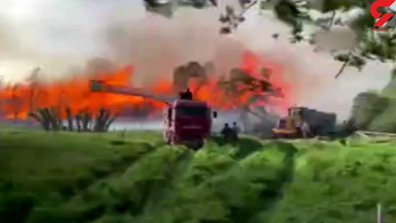 نیروگاه بیوانرژی ترکیه در آتش سوخت + فیلم
