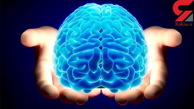 شارژ کردن مغز با 12 خوراکی خوشمزه