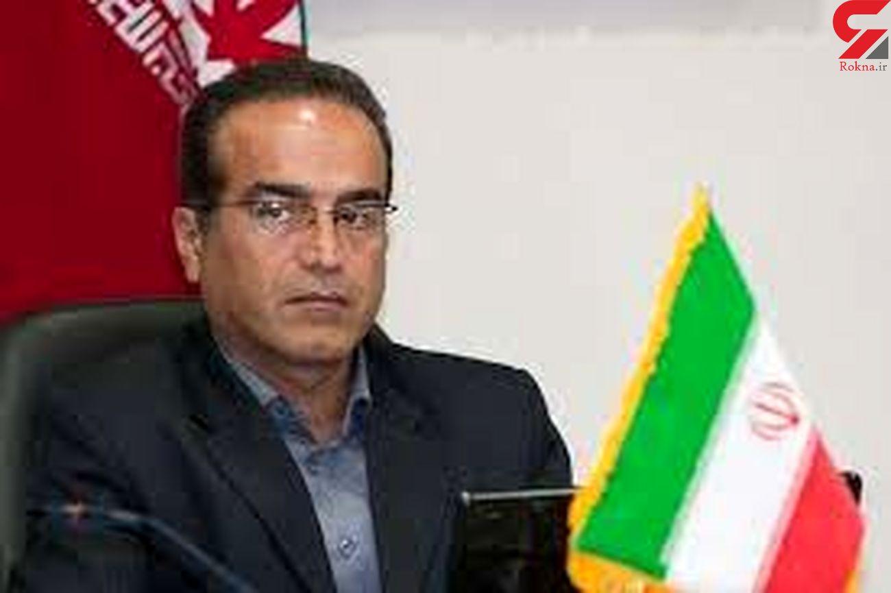 برنج وارداتی کشور از مسیر بوشهر توزیع خواهد شد