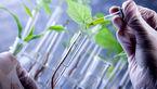 موافقت مجلس با دو فوریت طرح استخدام مهندسین ناظر کشاورزی