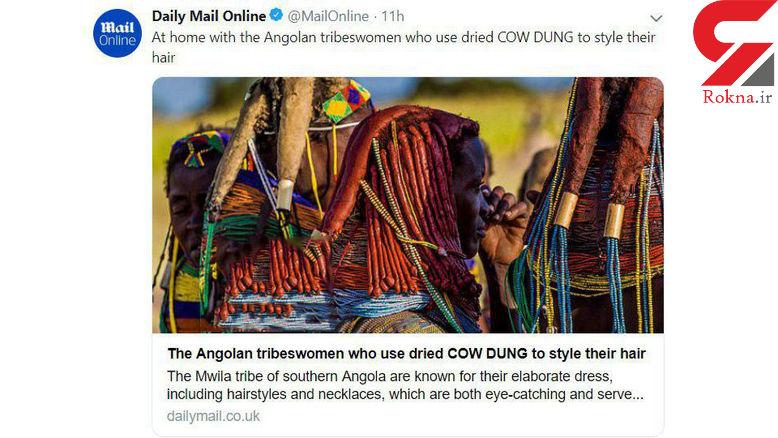 تزئین مو با پهن خشک شده گاو+عکس