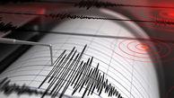 زلزله در بوشهر  وحشت آفرین شد / دقایقی پیش رخ داد