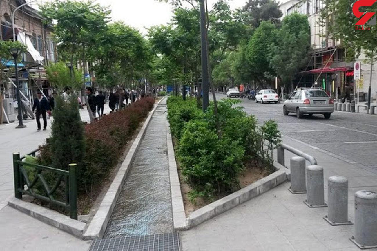 پشت پرده فروش دارو در ناصرخسرو/ از کف خیابان تا لب مرز