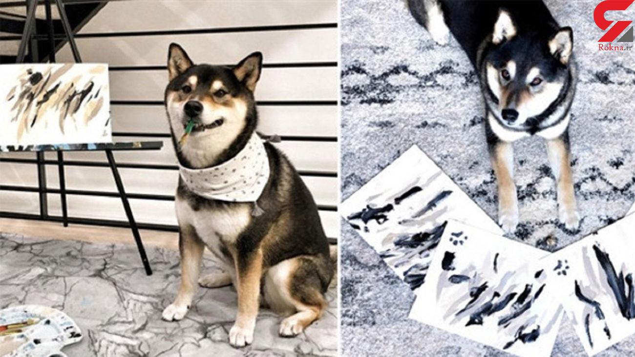 نقاشیهای این سگ صاحبش را پولدار کرد + فیلم