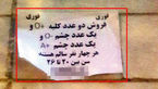 تکاندهنده / این 4 جوان شهرستانی چشم و کلیه هایشان را در تهران به فروش گذاشته اند! + عکس